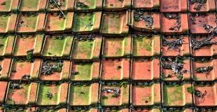Nettoyer sa toiture : guide et conseils d'entretien
