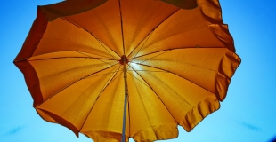 Quelles solutions pour se protéger du soleil au jardin ?